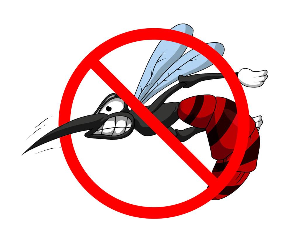 Натурални рецепти срещу ухапвания от комари