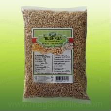 Пшеница за покълване
